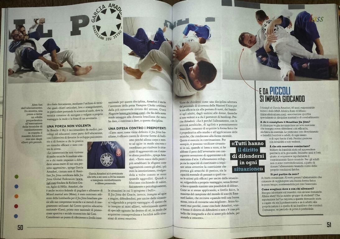 BJJ Brazilian Jiu Jitsu